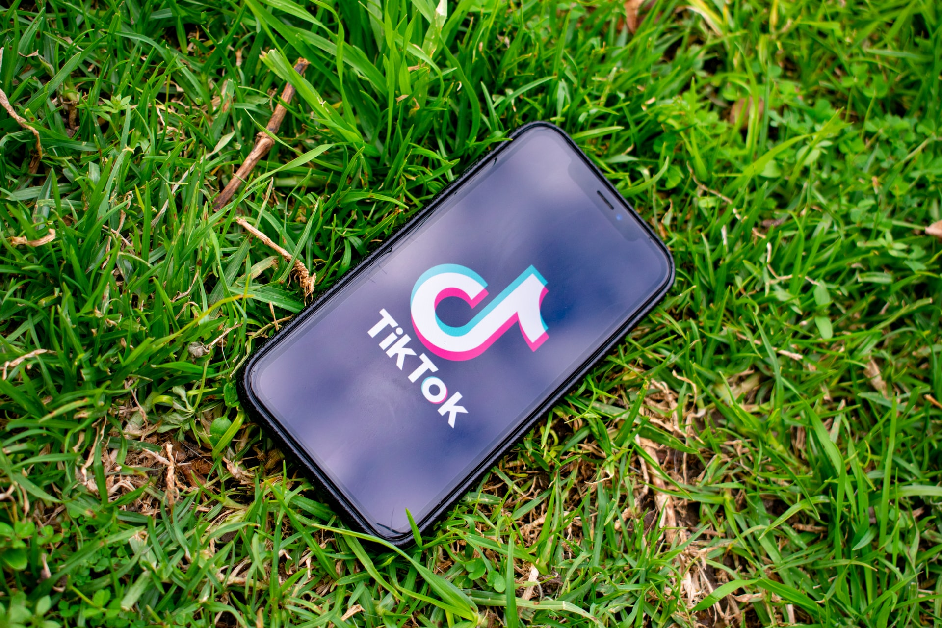 TikTok app on a phone